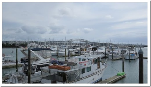 Auckland Harbor Bridge Boats
