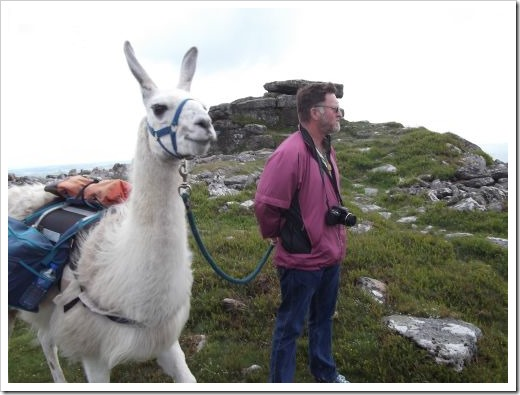 Llama and Hubby Looking at View