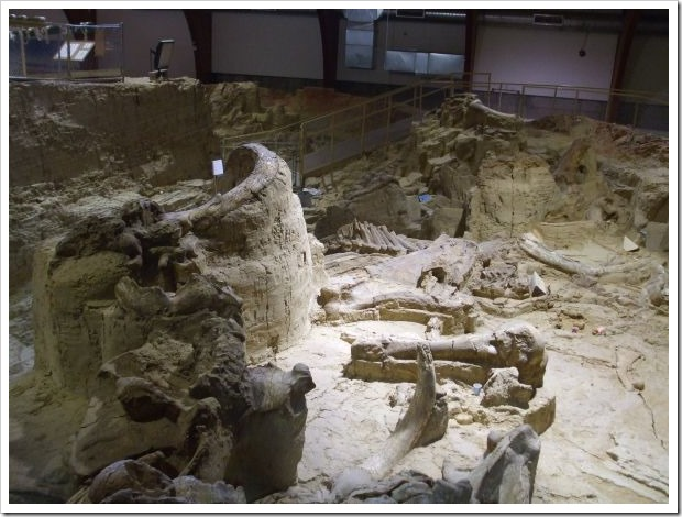 Mammoth_dig site