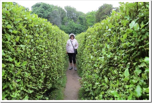 Sark_Shelley in Maze